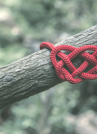 Untangling from Your Ex-Husband After Divorce | By Jen Grice